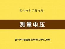 《测量电压》了解电路PPT课件2