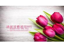 精致玫瑰花背景的�矍榍槿斯�PPT模板