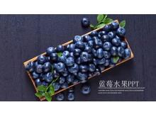 紫色水果蓝莓PPT模板免费下载