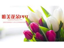 唯美郁金香鲜花背景的通用PPT模板免费下载