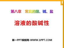 《溶液的酸碱性》常见的酸、碱、盐PPT课件2