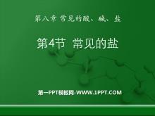 《常用的盐》常见的酸、碱、盐PPT课件4