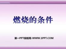 《燃烧的条件》PPT课件3