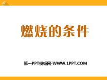 《燃烧的条件》PPT课件