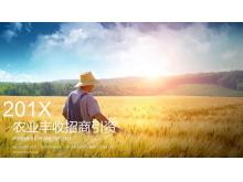 农业招商引资PPT模板