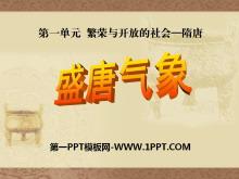 《盛唐气象》繁荣与开放的社会—隋唐PPT课件2