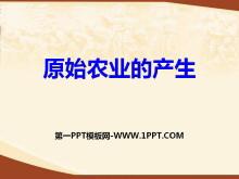 《原始农业的产生》史前时期PPT课件3