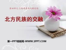 《北方民族的交融》三国两晋南北朝时期PPT课件2