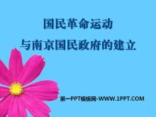 《国民革命运动与南京国民政府的建立》新民主主义革命的兴起PPT课件2