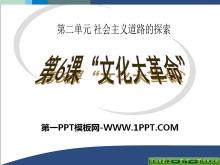 《文化大革命》社会主义道路的探索PPT课件