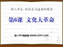 《文化大革命》社会主义道路的探索PPT课件2