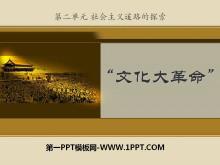 《文化大革命》社会主义道路的探索PPT课件3
