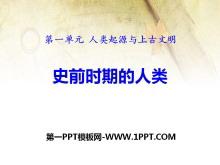 《史前时期的人类》人类起源与上古文明PPT课件3