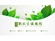 清新绿色植物背景的个人职业规划PPT模板