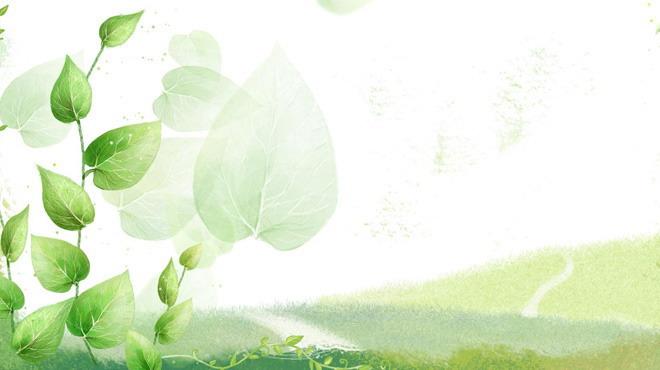 张绿色唯美叶子幻灯片背景图片,第一PPT模板网提供精美植物幻灯