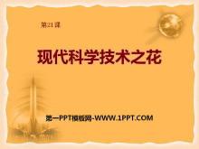 《�F代科�W技�g之花》�F代文化�c社��生活PPT�n件2