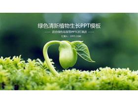 绿色嫩芽幼苗植物背景的环境保护PPT模板