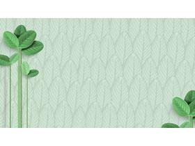 6张清新绿色叶子PPT背景图片