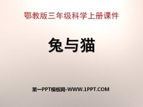 《兔�c�》家�B小�游�PPT�n件3
