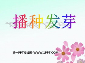 《播种发芽》PPT课件2
