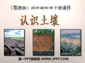《认识土壤》PPT课件2