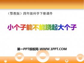 《小个子能不能跷起大个子》PPT课件3