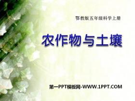 《农作物与土壤》农田PPT课件