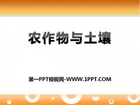 《农作物与土壤》农田PPT课件2