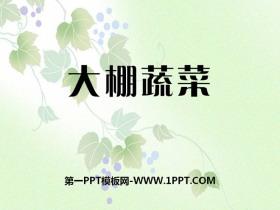 《大棚蔬菜》农田PPT课件2
