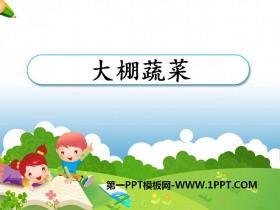 《大棚蔬菜》农田PPT课件3
