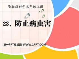 《防治病虫害》农田PPT课件