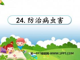 《防治病虫害》农田PPT课件2