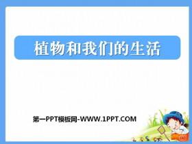 《植物和我们的生活》植物和我们PPT课件2