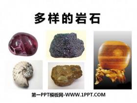 《多样的岩石》蓝色的地球PPT课件3
