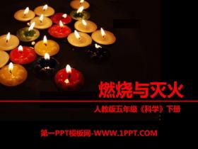 《燃烧与灭火》物质的变化PPT课件2
