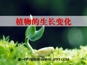 《植物的生长变化》生长与变化PPT课件