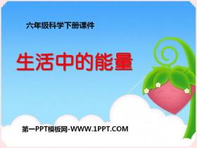 《生活中的能量》能量与生活PPT课件2