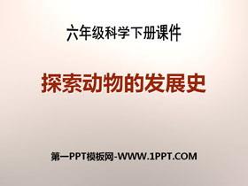 《探索动物的发展史》PPT课件