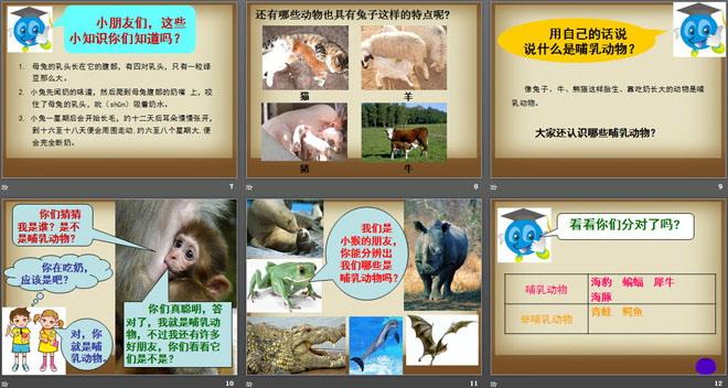 《吃奶长大的动物》多种多样的动物ppt课件