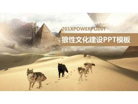 沙漠狼群背景的狼性公司�F�文化PPT模板