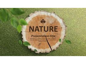 树木年轮木桩背景PPT模板免费下载