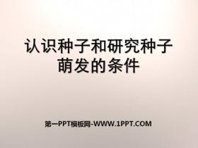 《认识种子和研究种子萌发的条件》PPT课件