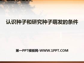 《认识种子和研究种子萌发的条件》PPT课件下载