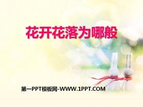 《花开花落为哪般》PPT课件下载