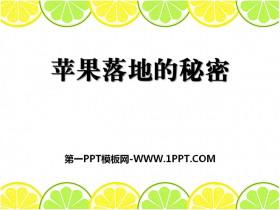 《苹果落地的秘密》PPT课件