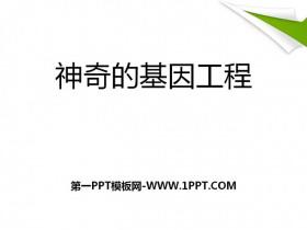 《神奇的基因工程》PPT课件