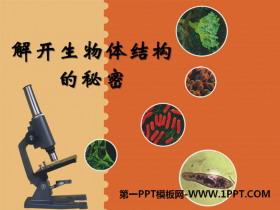《解开生物体结构的秘密》PPT课件