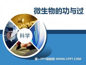 《微生物的功与过》PPT