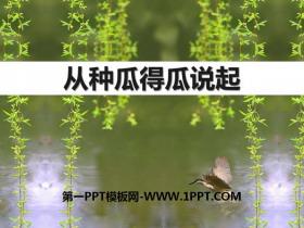《从种瓜得瓜说起》PPT课件tt娱乐官网平台