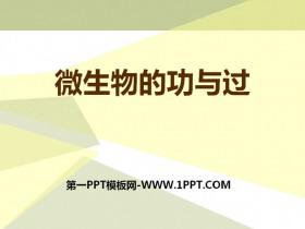 《微生物的功与过》PPT下载